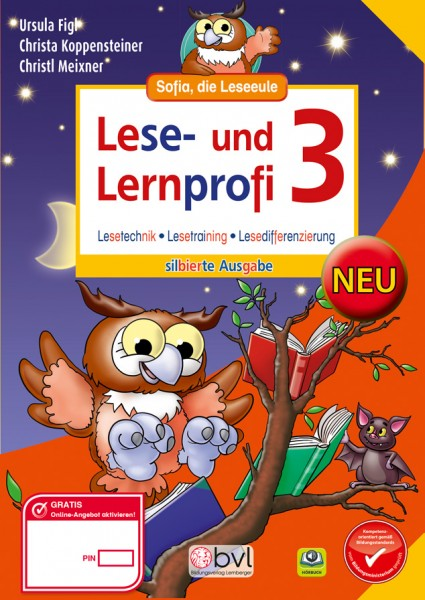 Lese- und Lernprofi 3 - Schulbuch: Silbierte Ausgabe